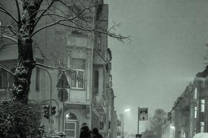 Мокрый снег. Германские штудии.
