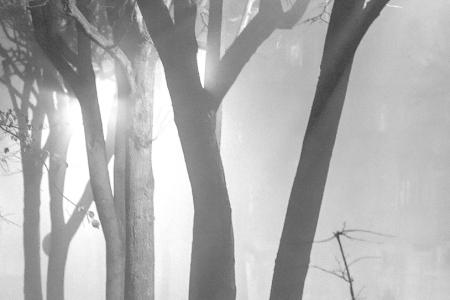 Туман и Город. Часть I (black and white).