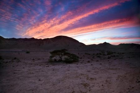Панорама. Пустыня Негев. Израиль. Закат