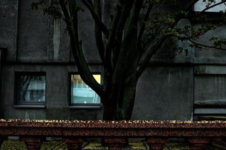 Весна. Дождь. Цвет города зеленый.