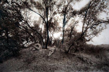 Мы. Лес и тишина.